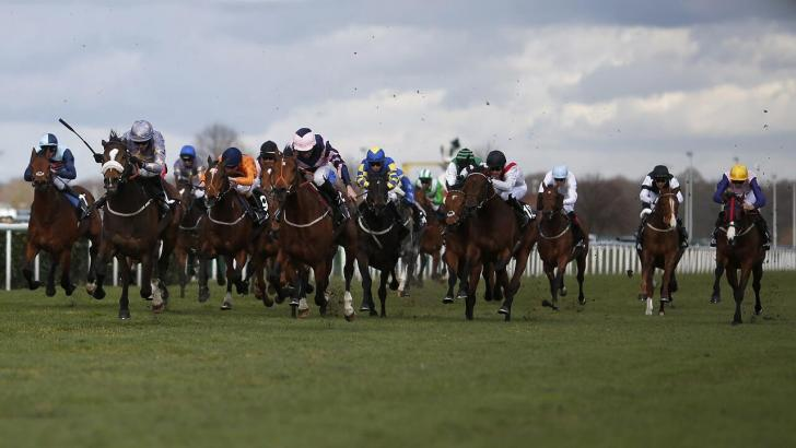 Runners in the Lincoln Handicap