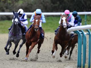 There is racing from Lingfield on Friday