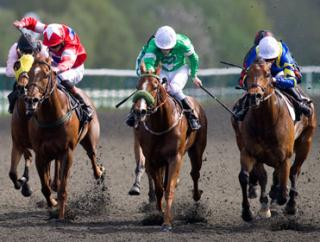 Two of Saturday's bets come from Lingfield
