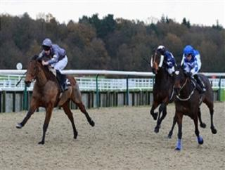 Lingfield host a good card on Friday afternoon