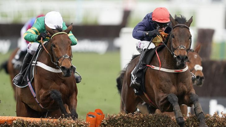 Stayers Hurdle Horse racing