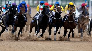 The Dubai World Cup Carnival continues at Meydan on Thursday afternoon