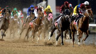 West Coast is a hot favourite for Saturday's Dubai World Cup