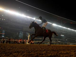 There is an seven-race card from Meydan on Thursday