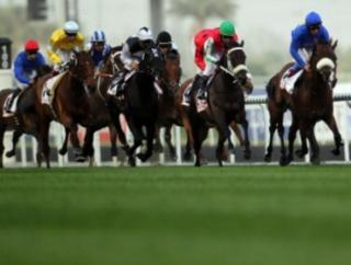 They race at Meydan on Thursday