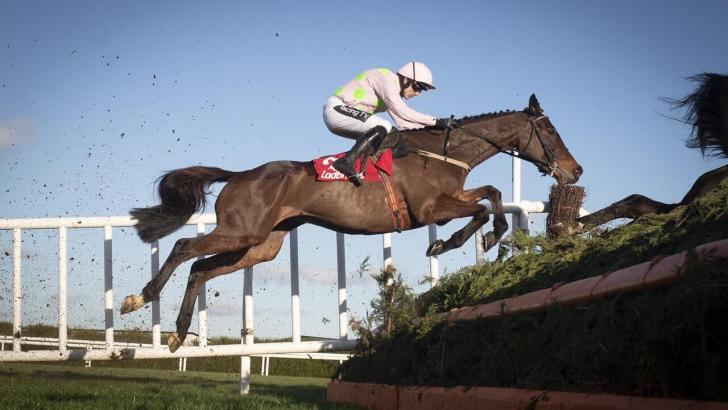 Leopardstown Fence Action