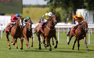Saturday's races on ITV4 come from Newbury, Newmarket and Ripon