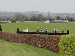 Navan hosts a Flat card on Wednesday