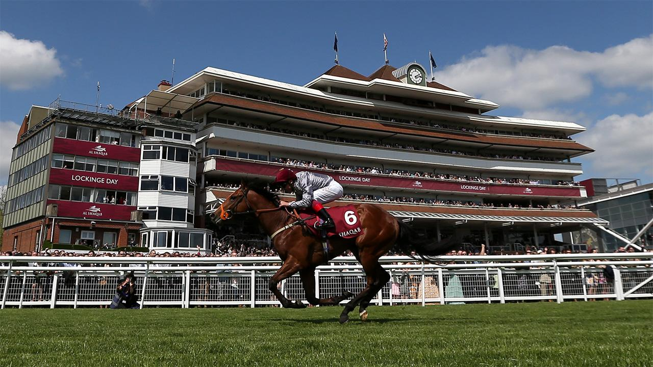 Timeform preview Saturday's Temple Stakes at Haydock