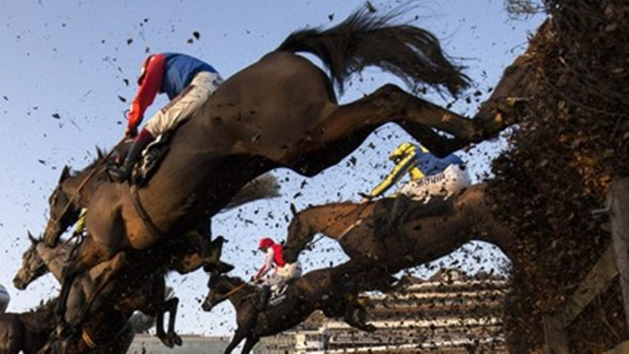 Horses go over the jumps at Newbury