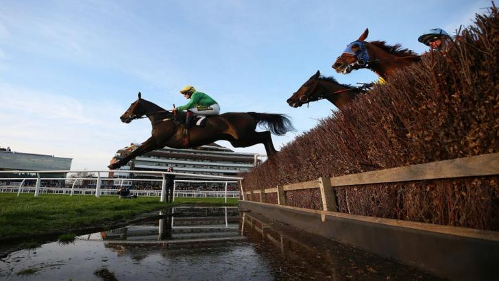 racing jumps action