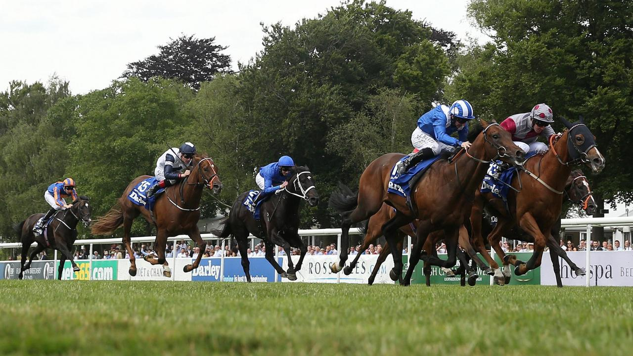 Newmarket racing action