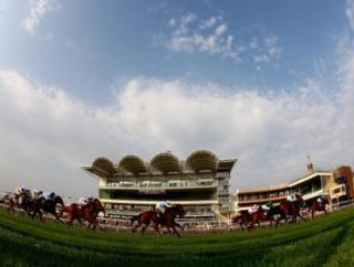 All eyes on the Cambridgeshire meeting at Newmarket for Tony