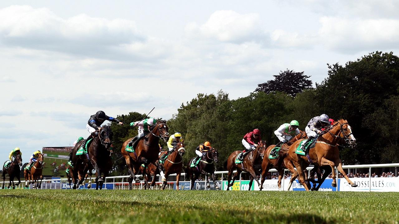 There is Flat racing from Newmarket on Friday evening