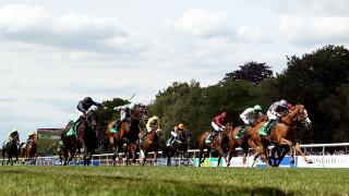 Timeform pick out three bets from South Africa on Friday