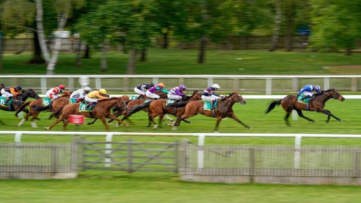 Newmarket race action