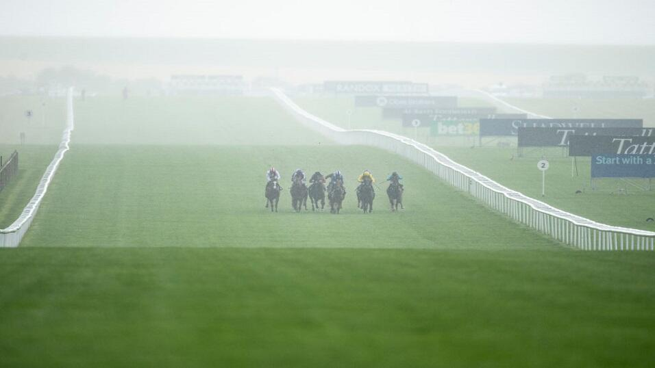 Newmarket in the mist