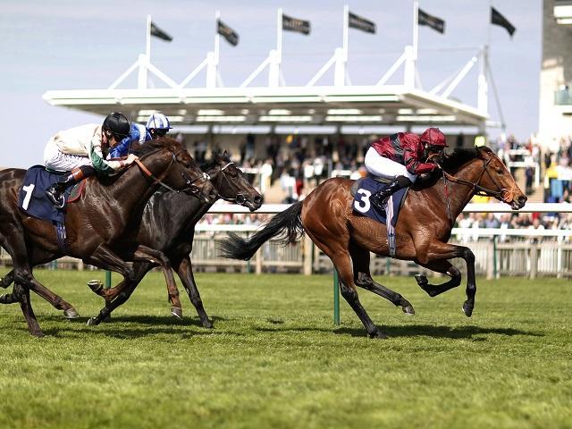 Ante post betting 2000 guineas newmarket sports betting vs stock market