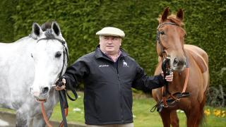 Paul Nicholls is considering sending Politologue (left) to Kempton