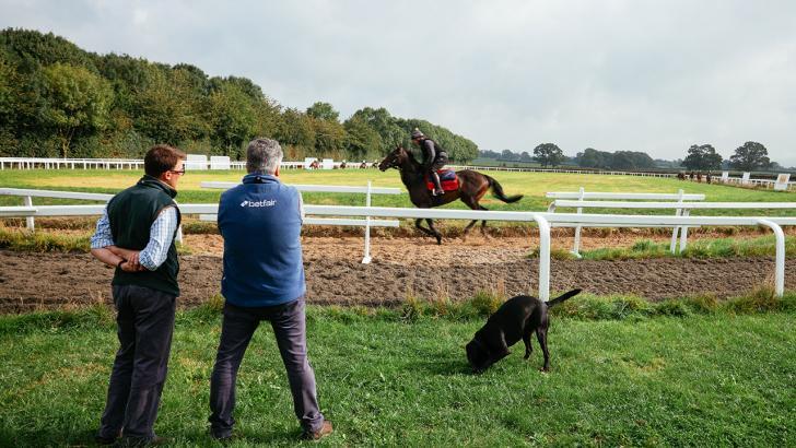 Betting betfair paul nicholls betting racing post greyhounds results