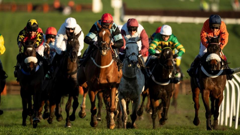 fontwell betting tips