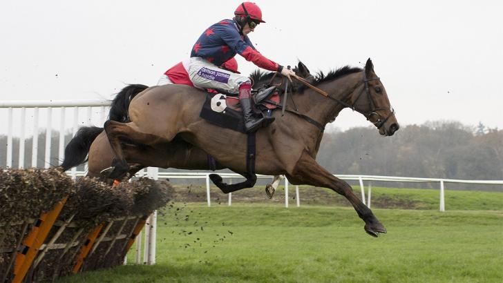 The Paul Nicholls trained Old Guard