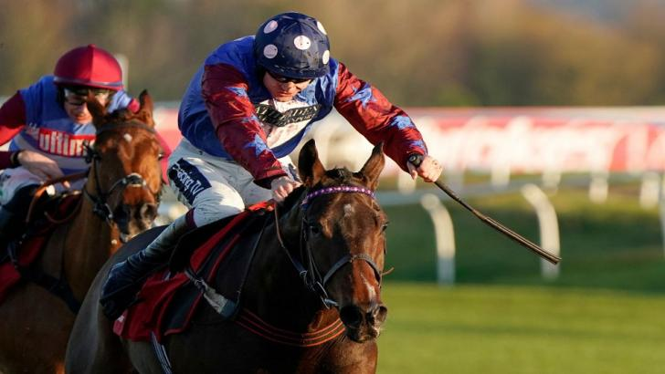 Stayers' Hurdle favourite Paisley Park