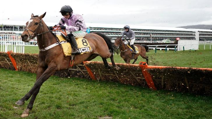 Pentland Hills take a jump at Cheltenham