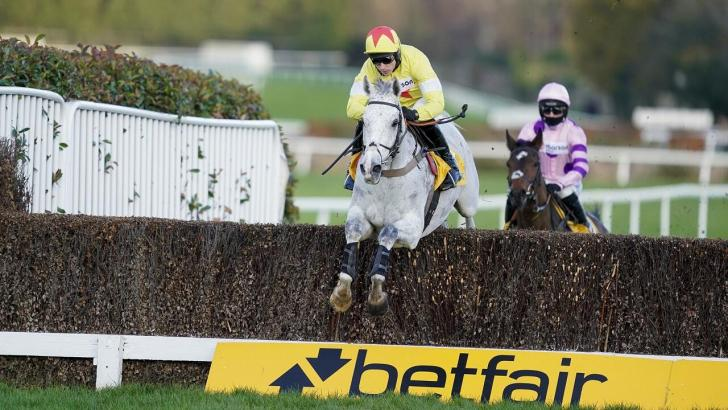 Politologue jumping the last in the Tingle Creek