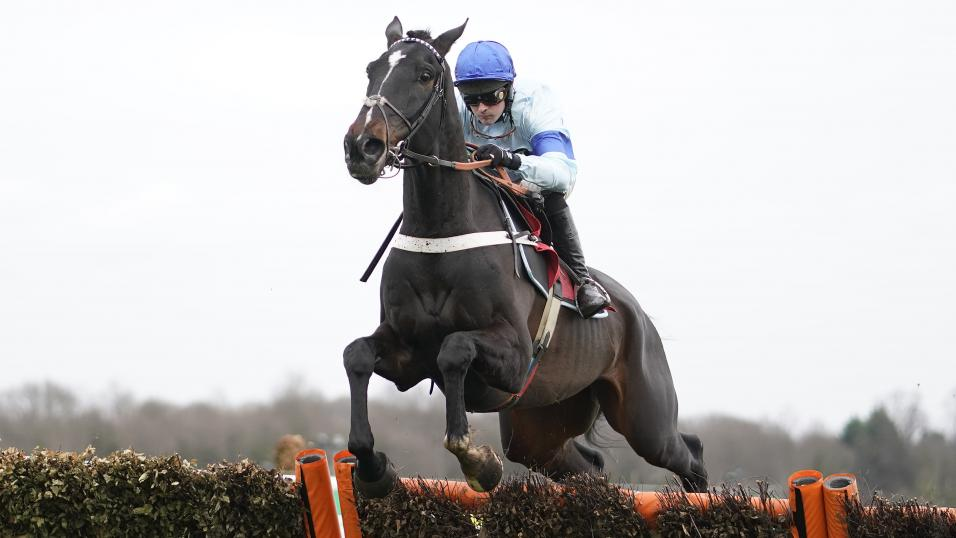 Aintree betting tips friday sbobet sport betting