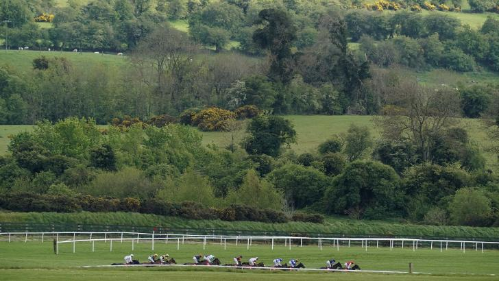 Horses running at Punchestown
