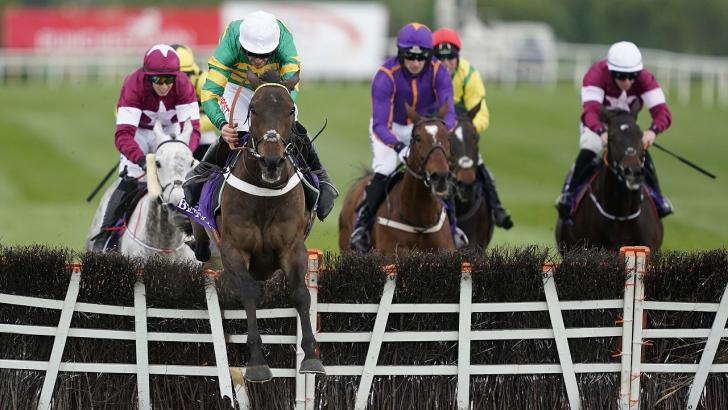 Punchestown hurdle