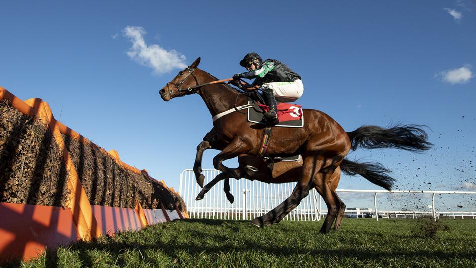Fakenham races bettingadvice what is a binary options trading