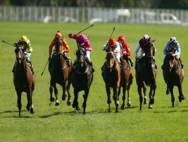 Timeform pick out three bets from South Africa on Saturday