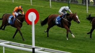 Today's best bet Nefarious runs at Windsor