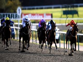 Friday's attempt at the Placepot comes from Lingfield