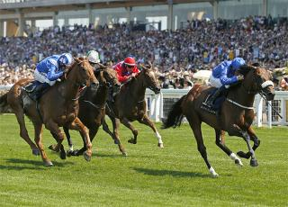 Ribchester can cap off his season with victory in the QEII