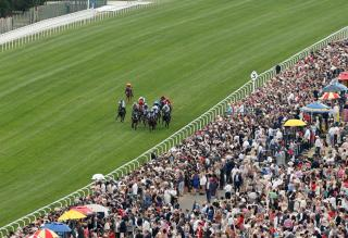 There is high-class Flat racing from Royal Ascot on Saturday