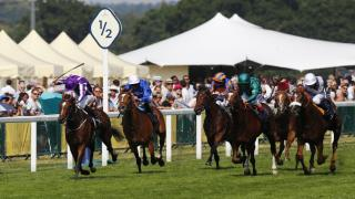 The Prince of Wales's Stakes is the feature race at Royal Ascot on Wednesday