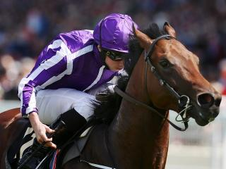 Ryan Moore has no less than nine rides on Saturday