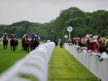 Racing comes from Salisbury on Sunday
