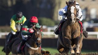 Adam expects Fox Norton to take all the beating in the Betfair Tingle Creek