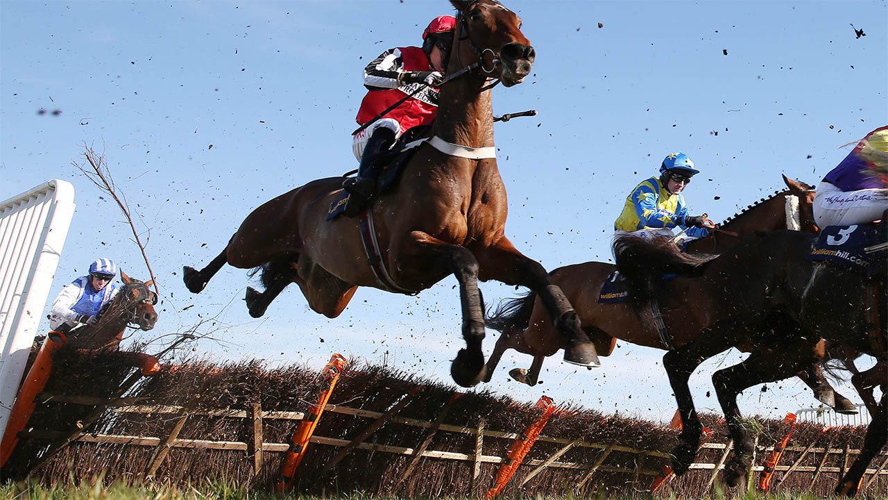Tolworth hurdle betting advice 11betting facebook