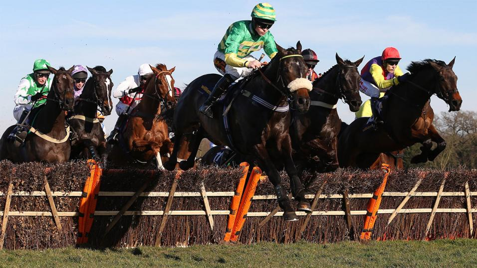 Sandown Hurdle Action