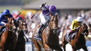 Irish Derby favourite Saxon Warrior