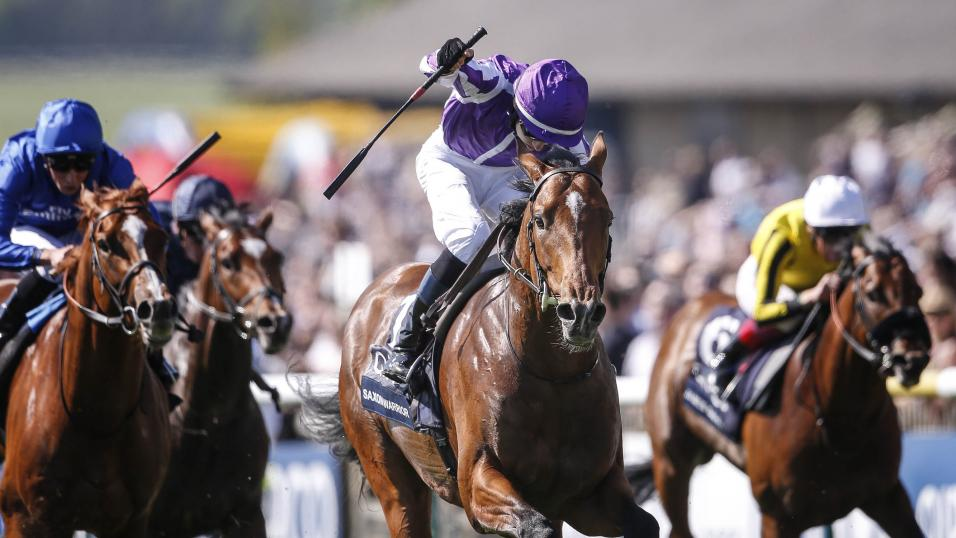 2000 Guineas winner Saxon Warrior is just one of several Group 1 winners in action at Leopardstown on Saturday