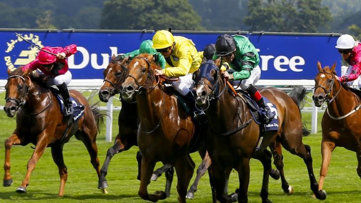 ITV Horse Racing Tips & Betting Odds - Tony Calvin @ Betfair