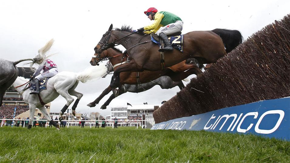 Sizing John aims to win back-to-back Cheltenham Gold Cups