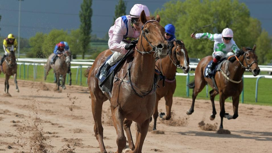 Southwell races betting tips vegas bets on super bowl 50