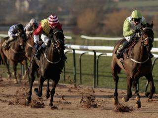 Two of Follow The Money's selections run at Southwell this afternoon